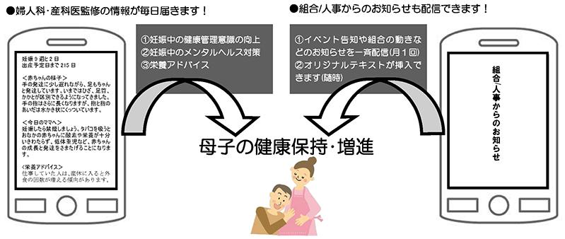 plan6_arc