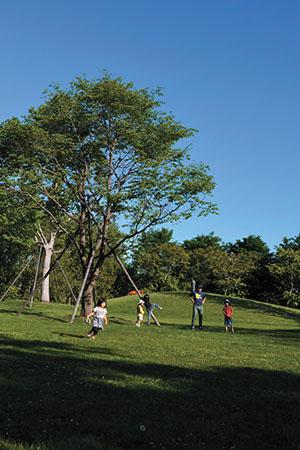 本社工場の外に広がる緑の風景。地続きの事業所内保育所からは、園庭で遊びまわる子どもたちの元気な声が聞こえる。